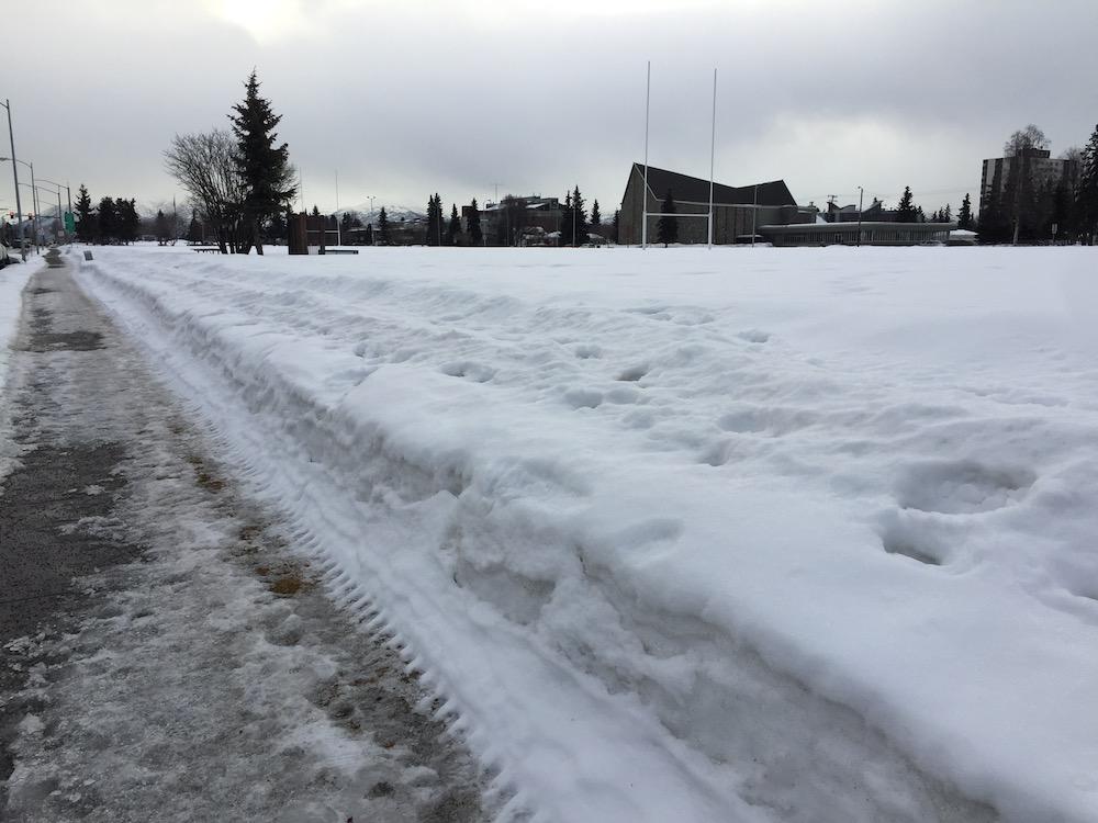 Park_Strip_snow