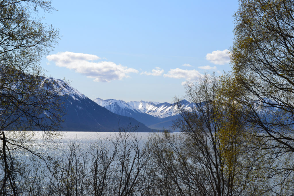 Turnagain Arm - May 2012