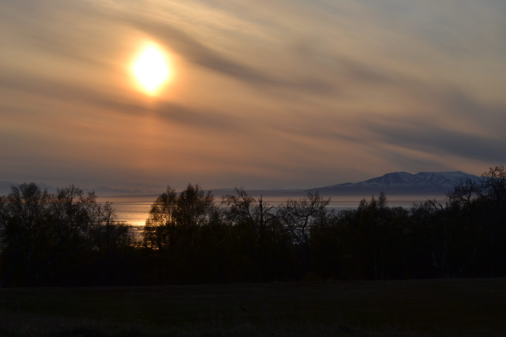 evening walk at Kincaid Park