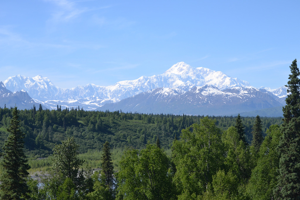 Denali View South