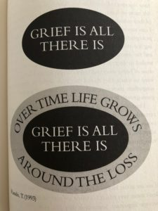 grief image from Grief Works - Julia Samuel