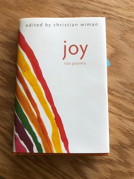 Joy - Christian Wiman Cover