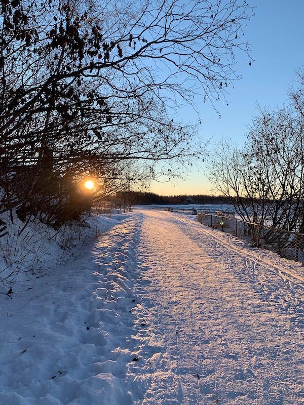 Coastal Trail Run in the Sun